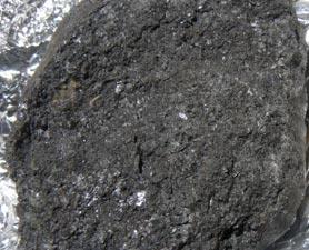 Meteorite Bearing Amino Acids